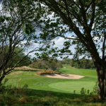 Best Golf Courses in New York