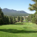 Best Golf Courses in Arizona